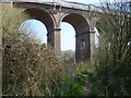 TQ3228 : Footpath under Balcombe Viaduct by Ian Yarham