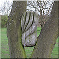TL8814 : Wood Sculpture, Tiptree Heath by Roger Jones