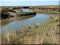 TF9644 : Gulls on tidal creek in Stiffkey salt marshes by Evelyn Simak