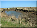 TF9644 : Tidal creek in the Stiffkey saltmarsh by Evelyn Simak