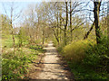 SD7009 : Path in Queen's Park by David Dixon
