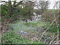 SJ3675 : Pond beside footpath junction by Maggie Cox
