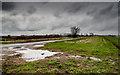 TL6174 : East Fen Drove by Kim Fyson