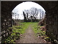 SJ8479 : Through the arched arhway by Ian Paterson