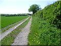 TL4755 : Track leading to Netherhall Farm by Marathon
