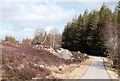 NH4790 : Road between Croick and The Craigs by Trevor Littlewood