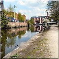 SJ9398 : Geese along the Ashton Canal by Gerald England