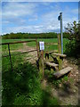 SU9287 : Footpath through field from Green Common Lane by Shazz