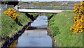 J4973 : Whins and canal, Newtownards (2013-2) by Albert Bridge