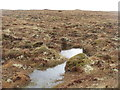 NB2836 : Lewisian bog by M J Richardson