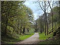 SK1460 : Former railway cutting along the Tissington Trail by Andrew Hill