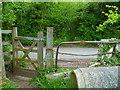 SU9883 : Footpath reaches Farthing Green Lane by Shazz