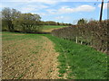 TR0134 : Saxon Shore Way near Gill Farm by Chris Heaton