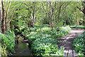 TQ7910 : Ponds Wood : Week 20