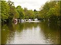 TQ7557 : River Medway by David Dixon