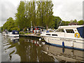 TQ7557 : Allington Marina, River Medway by David Dixon