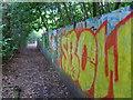 SU9684 : Beeches Way (39) by Shazz