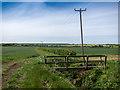TL1380 : Footbridge over farm drain by Kim Fyson