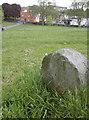 ST5971 : Marker stone in Victoria Park by Neil Owen