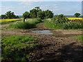 SU8874 : Church Lane track by Alan Hunt