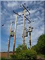 NT5973 : Rural East Lothian : Bringing Power To The People : Week 24