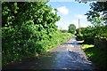 ST5264 : Kingdown : Hen Lane by Lewis Clarke
