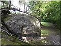 TQ5134 : Rock Outcrop beside the High Weald Landscape Trail by David Anstiss