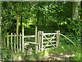 TQ5134 : Stile and gate on High Weald Landscape Trail in Jockey's Wood by David Anstiss