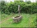 SJ4352 : Old Water Pump at Caldecott Green by Jeff Buck