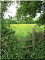 SJ4252 : Footpath and Stile to Crewe Hill by Jeff Buck