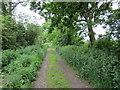 SJ4353 : The Bishop Bennet Way at Wetreins Green by Jeff Buck