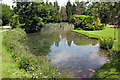 TL0736 : Pond by Newbury Manor by Philip Jeffrey