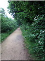 TL0739 : Path through the woods by Philip Jeffrey