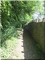 SE0942 : Footpath - Carr Lane by Betty Longbottom