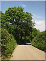 SX4061 : Lane to Kingsmill by Derek Harper