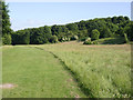 SE3700 : Site of Jump Pit and former tramroad by Alan Murray-Rust