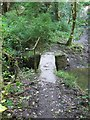 SW7425 : Monolithic stone slab forming a footbridge over Frenchman's Pill by Dr Duncan Pepper