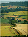 SO6523 : A slice of Herefordshire by Jonathan Billinger