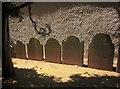 SX9064 : Gravestones, Torre churchyard : Week 30