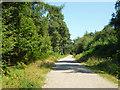 TQ2130 : Track, St. Leonard's Forest by Robin Webster