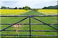 SU7986 : Footpath towards Rotten Row by Graham Horn