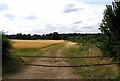 TL2769 : Track to Moats Way Farm by Andrew Tatlow