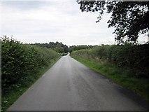 SJ5250 : Egerton Lane by Jeff Buck