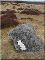 NN8362 : Na Clachan Aoraidh by Richard Webb