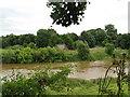 SJ3915 : Severn viewpoint at Shrawardine 3-Shropshire by Martin Richard Phelan