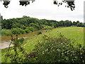 SJ3915 : Severn viewpoint at Shrawardine 4-Shropshire by Martin Richard Phelan