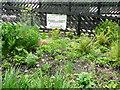 SE0125 : The Elizabeth Garden, Mytholmroyd Station by Humphrey Bolton