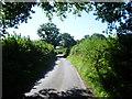 TQ4760 : Randle's Lane looking south by Marathon