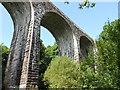NX9373 : Goldielea Viaduct : Week 36