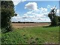 TL0948 : Farmland west of Cople by Christine Johnstone